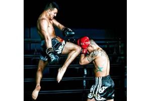 Спортивные добавки для бойцов ММА, боксеров и микс файта